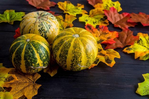 Zucche decorative con foglie secche autunnali
