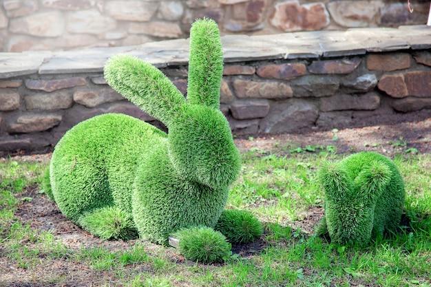 Una struttura decorativa a forma di simpatica famiglia di conigli fatta di erba verde o cespugli. decorazione nel parco, figurine decorative