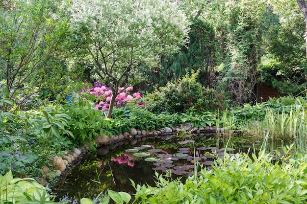 Alberi decorativi arbusti e fiori nel giardino con laghetto