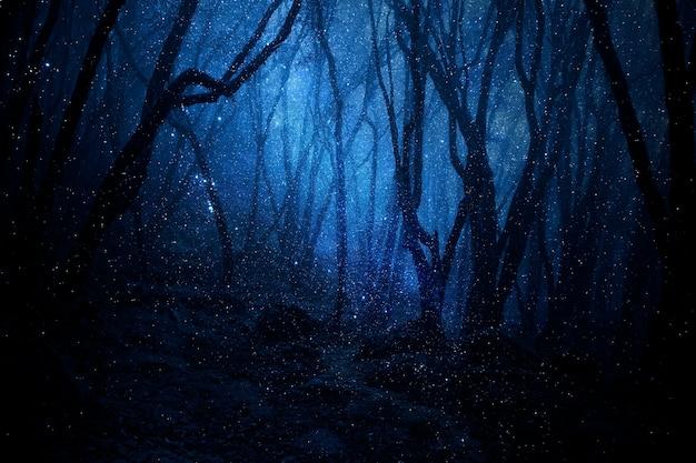 Giungla tropicale profonda nell'oscurità