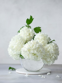 Delicato bouquet primaverile di viburnum opulus in un vaso rotondo di vetro. concetto di arredamento per la casa. immagine verticale. muro grigio