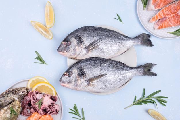 Vista dall'alto di pesce delizioso orata cruda