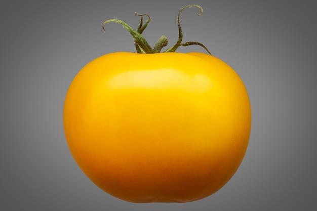 Delizioso singolo pomodoro giallo isolato su sfondo grigio con tracciato di ritaglio