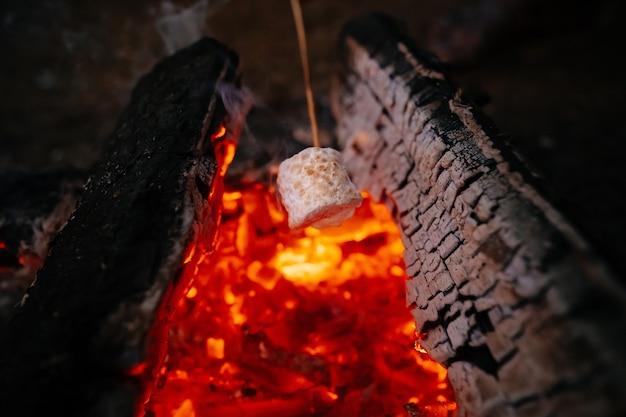 Deliziosi e dolci marshmallow su un bastoncino sul fuoco nella foresta
