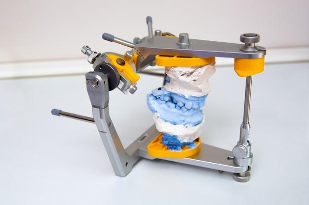 Esami odontoiatrici bretelle tecnologia articolatore del dente