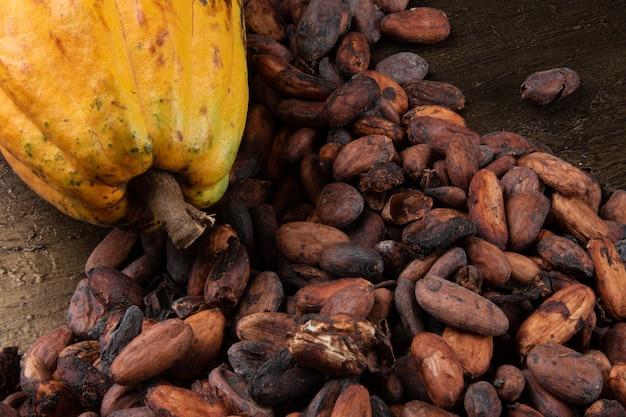 Dettaglio della frutta di cacao con fave di cacao crude dal sud del brasile di bahia.