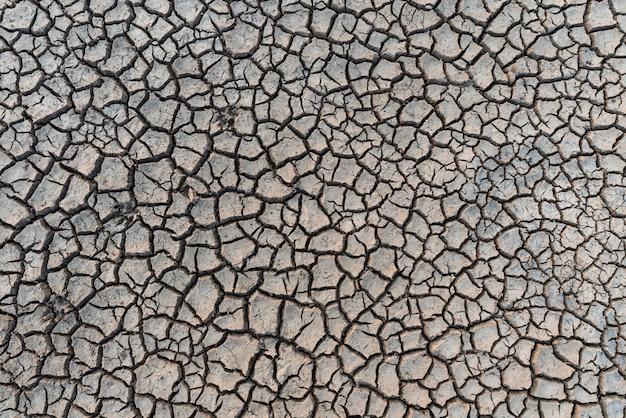 Dettagli di un fondo a terra incrinato secco del suolo della terra.