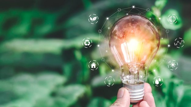 Lo sviluppo del risparmio energetico nell'ecosistema.