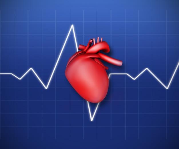 Schema di un cuore con linea ecg