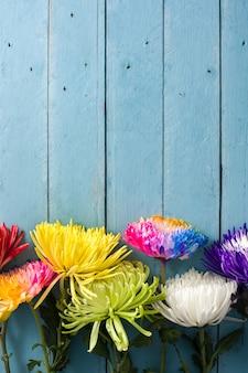 Diversi fiori colorati