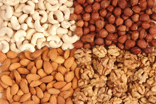 Le noci differenti (mandorle, anacardi, noci e nocciole) si chiudono su