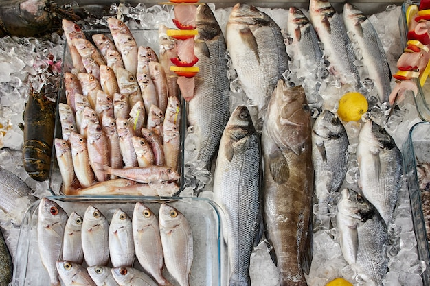 Diversi tipi di pesce di mare crudo fresco su ghiaccio