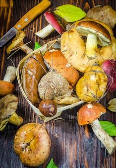 Diversi tipi di funghi selvatici raccolti solo sul tavolo
