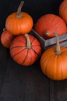 Diverse varietà di zucche mature su uno sfondo di legno con posto per il testo. famiglia di zucche.