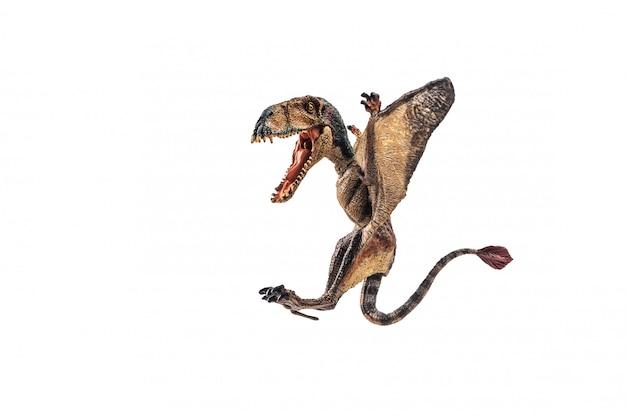 Dinosauro di dimorphodon su fondo bianco