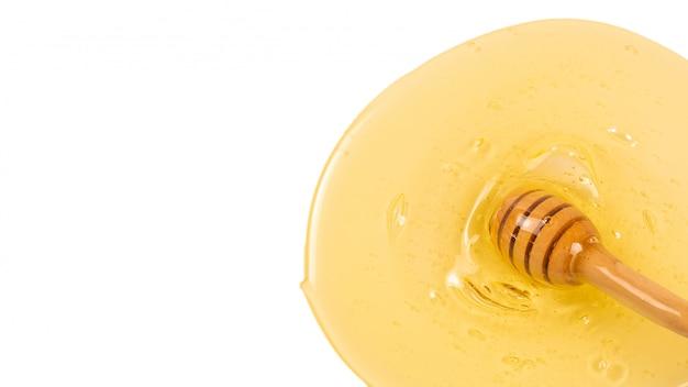Merlo acquaiolo con miele su una priorità bassa bianca. spazio per testo o design.