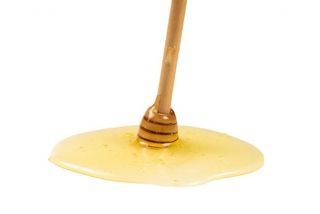 Merlo acquaiolo con miele su una priorità bassa bianca.