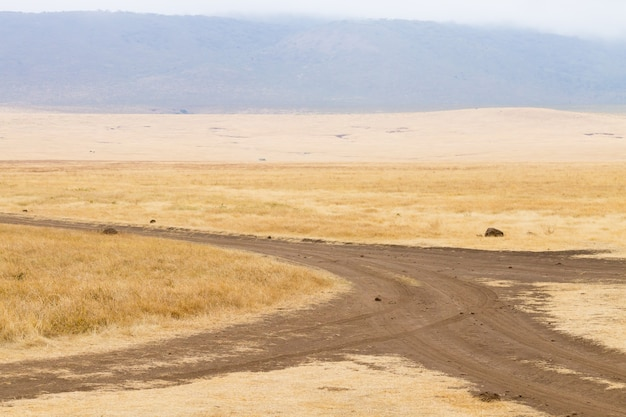 Strada sterrata sul cratere di ngorongoro