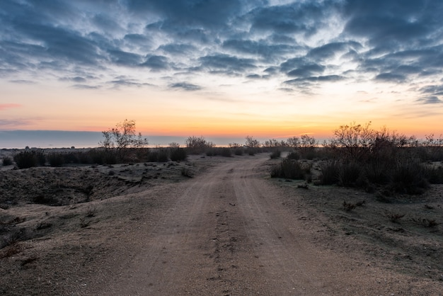 Strada sterrata nel deserto