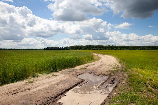 Strada sporca e bagnata dopo la pioggia nel campo