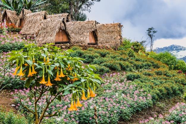 Alla scoperta della tailandia Foto Premium