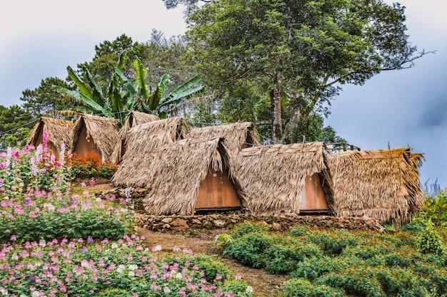 Alla scoperta della tailandia