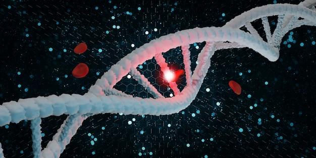 Elica del dna struttura della vita e globuli rossi 3d'illustrazione