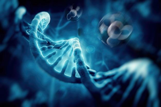 Molecola e cellule di dna