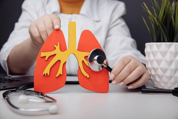Un medico sta toccando un modello di polmone con uno stetoscopio in ufficio.