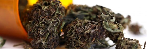 Prescrizione del medico per l'erba