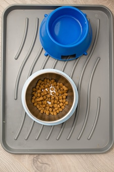 Ciotole per cibo secco e acqua per cani in casa