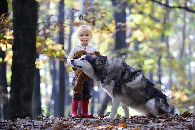 Cane husky con bambino. bambina e cagnolino nella foresta di autunno.