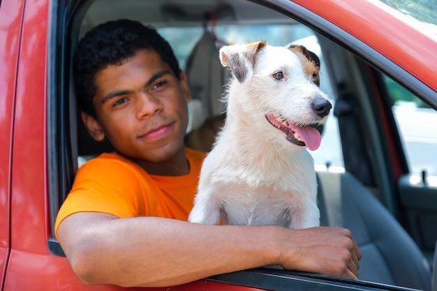 Il cane jack russell siede in macchina con il suo padrone