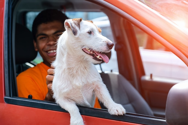 Il cane jack russell siede in macchina con il suo padrone sorridente
