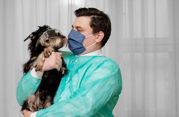 Cane con occhiali di sicurezza, condizioni antigieniche, il medico tiene tra le mani un cane malato di coronavirus,