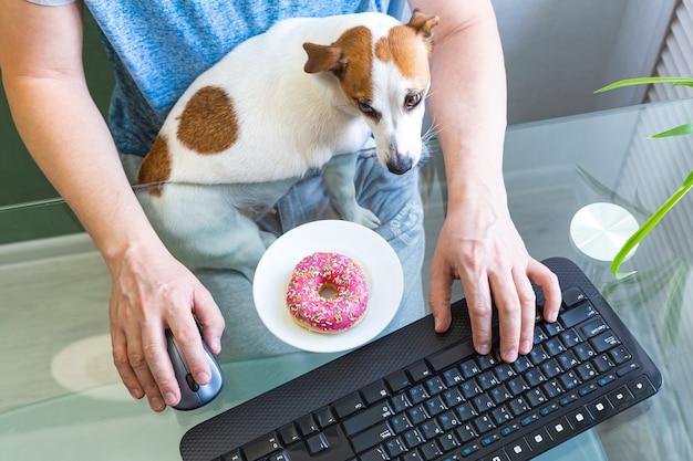 Il cane si siede tra le braccia di un uomo che lavora al computer.
