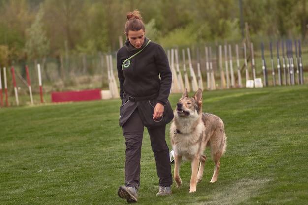 Addestratore di cani durante l'addestramento di un cane lupo