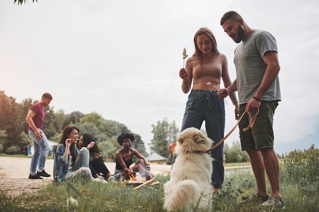 Anche il cane vuole assaggiarlo. un gruppo di persone fa un picnic sulla spiaggia. gli amici si divertono durante il fine settimana.