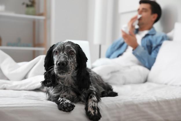Cane con il suo padrone malato a casa