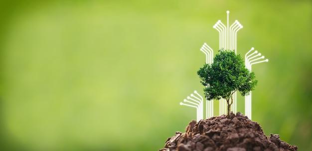 Fare csr piantando alberi, concetto di csr e business piantando alberelli di alberi
