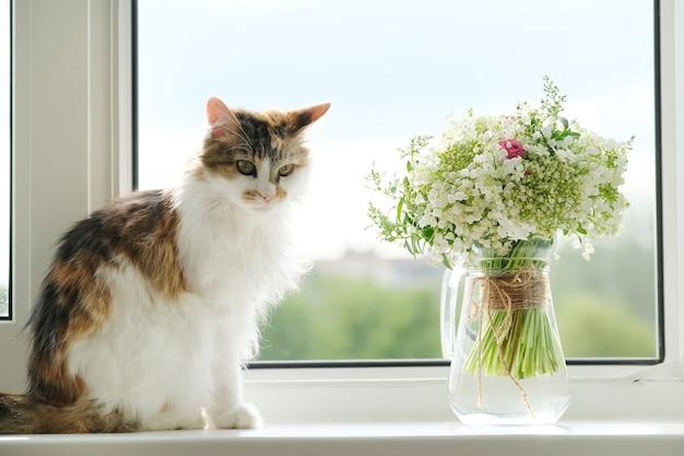Gatto lanuginoso domestico e bouquet di fiori primaverili mughetti in vaso sul davanzale