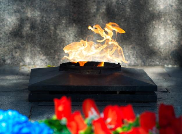 Priorità bassa drammatica del bokeh della fiamma eterna