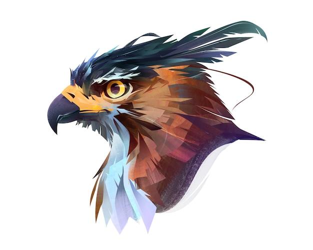 Colore brillante disegnato rapace falco ritratto su sfondo bianco