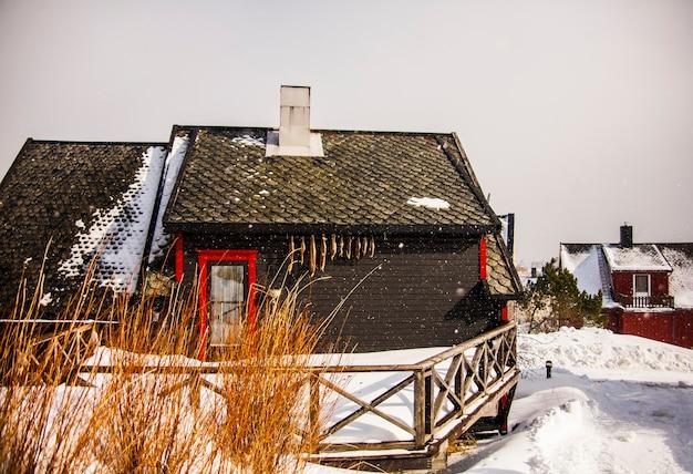 Terrore e baccalà nelle isole lofoten, nel nord della norvegia.