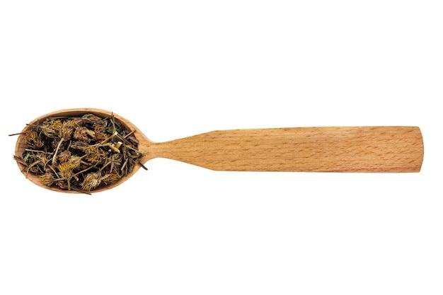 Bidens secchi in un cucchiaio di legno isolato su uno sfondo bianco