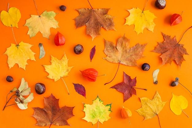 Foglie di autunno luminose secche arancio sul tavolo di carta