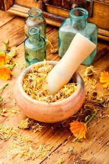 Calendula essiccata in un mortaio e pestello. erboristeria tradizionale.