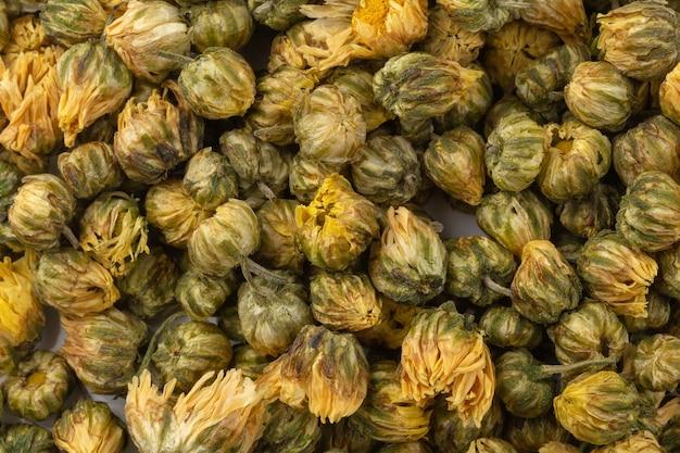 Fiori secchi del crisantemo isolati su fondo bianco.