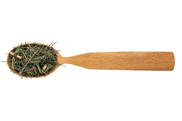 Essiccato equisetum arvense in un cucchiaio di legno su uno sfondo bianco.