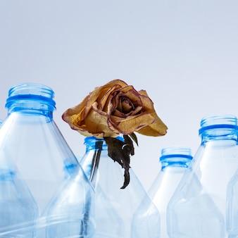 Fiori secchi in bottiglie di plastica come simbolo di un ecosistema morente da barattoli di plastica